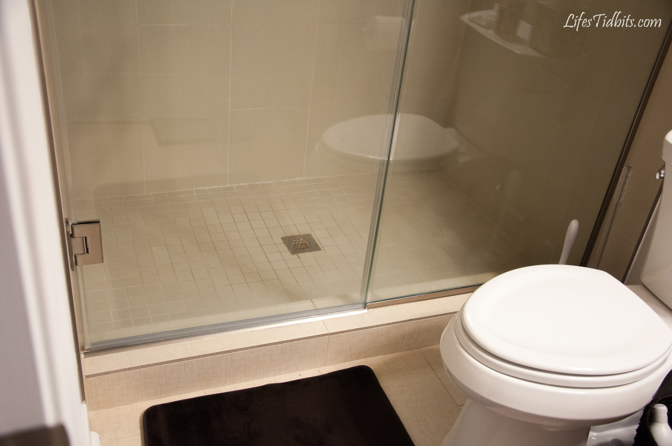 Frameless Shower Door Leaks At Bottom Shower Ideas